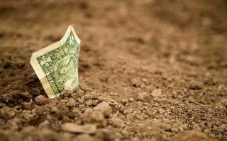 Как можно выделить земельную долю из земель с/х назначения в 2020 году