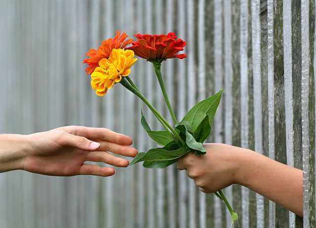 дарственная или договор купли-продажи, рука дарит букет цветов другой руке