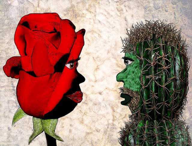 как продать квартиру если второй собственник против, кактус и роза с человеческим лицом друг на против друга