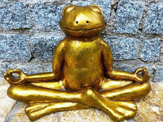 Компенсация за найм жилья сотрудникам , лягушка золотая медитирует