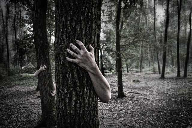долг по алиментам после смерти должника,ствол дерева и руки