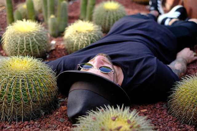 Как разделить лицевой счет в приватизированной квартире, мужик лежит в кактусах