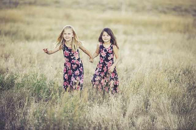 упрощенный порядок взыскания алиментов, две девочки сестрички гуляют по полю держатся за руки