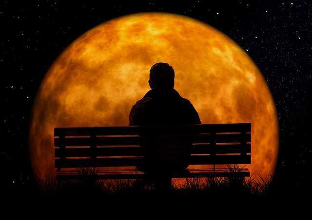 выселить бывшего мужа из квартиры, на закате мужик сидит на скамейке