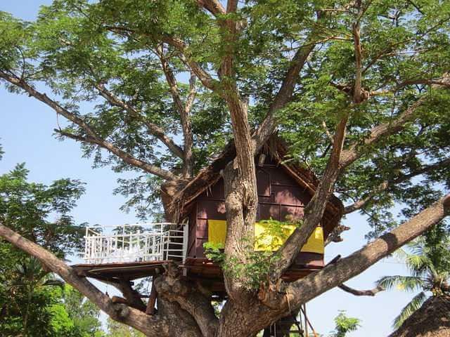 Ипотека c 14 лет, дом на дереве